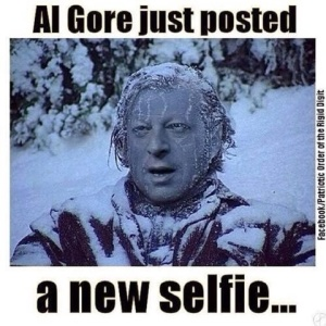 Al gore frozen