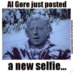Al Gore-Frozen
