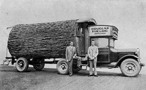 Logging 6