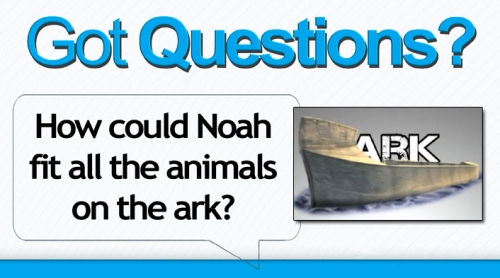 Noah-animals-on-the-ark3